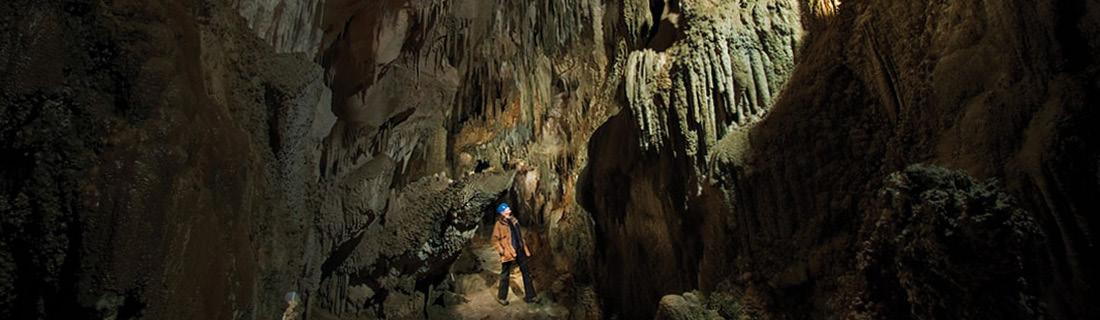 Rawhiti Cave Trail