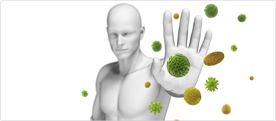 Beta Glucans and your Immune System: A match made in heaven!