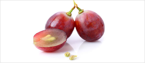 The power of grape seed: Fighting free radicals with natural antioxidants