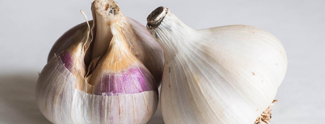 kyolic garlic for heart and immune system
