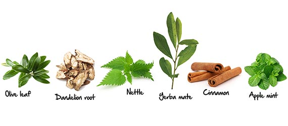 weight-management-herb-banner